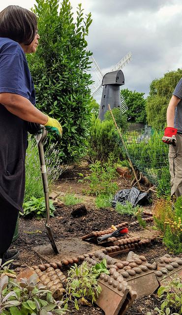 gardening volunteers in windmill gardens